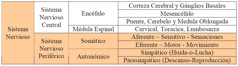 Secuelas neurológicas de las inmunizaciones: Bases anatómicas ...